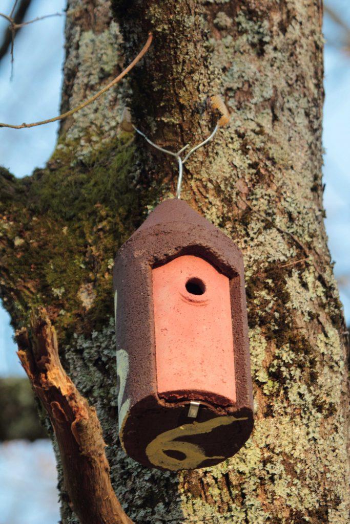 Nichoir - Parcours Biodiversité