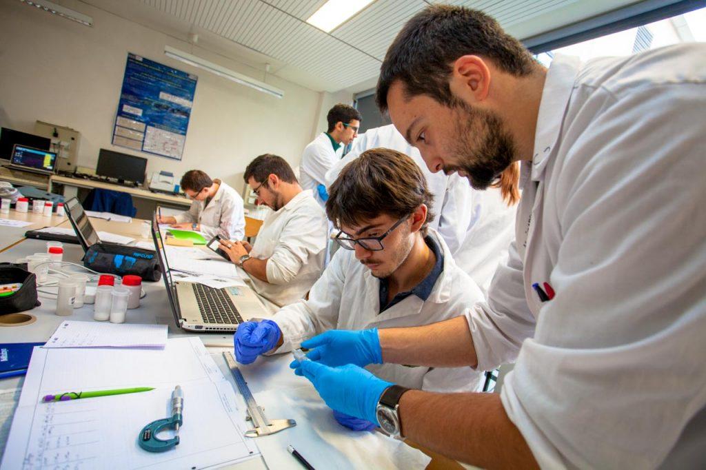 Licence Sciences des Matériaux